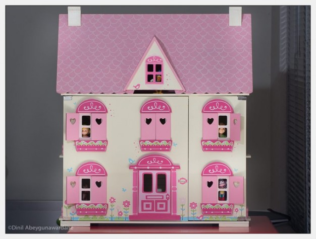 dollhouse-olympus-75-300-panasonic-100-300