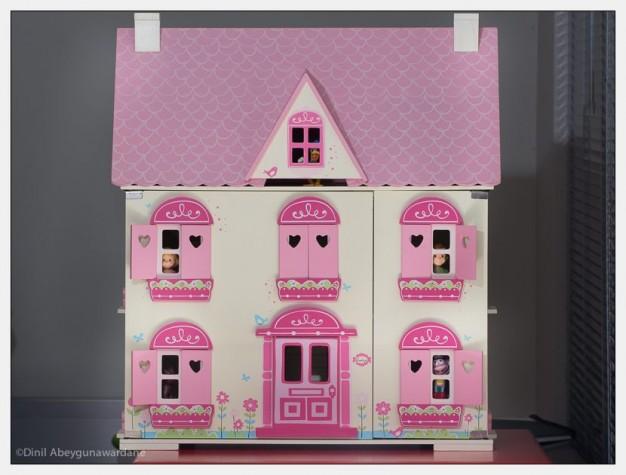 dollhouse-olympus-75-300-panasonic-100-300