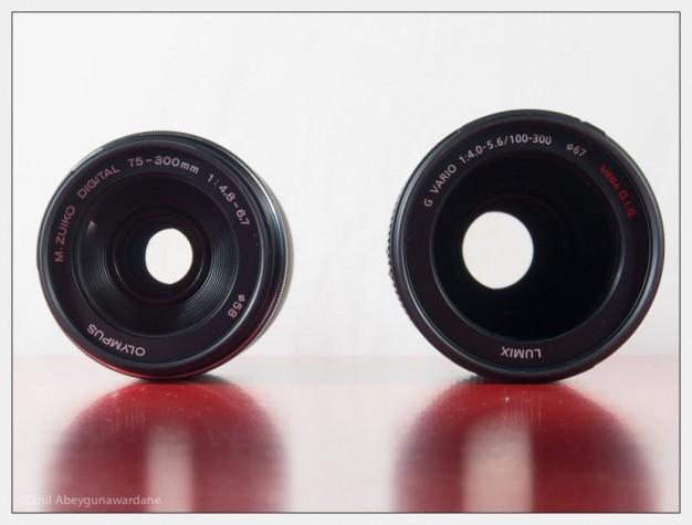 olympus-75-300-panasonic-100-300