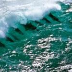 pod-of-dolphins-riding-a-wave-kalbarri-western-australa