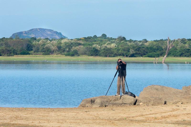 dinil-abeygunawardane-nature-photographer-struckbylight